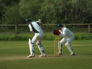 Wilman Cricket Wicket keeping TSR R