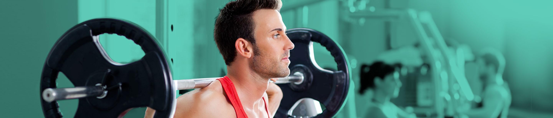 Shoulder Anatomy Banner Image